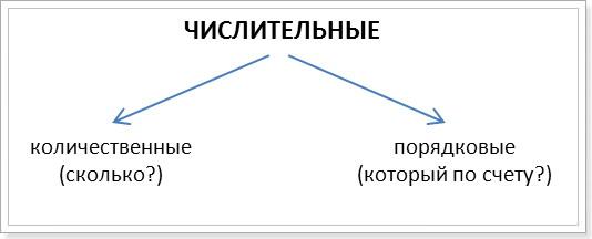 Количественные и порядковые числительные