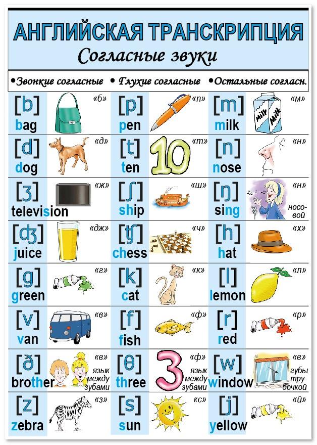 вас произношение английского алфавита звонкие и глухие буквы связи вопросами