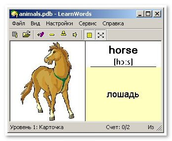 Детский английский словарь с переводом