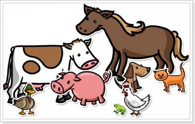 Домашние животные по английскому языку
