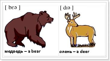 Животные по английски