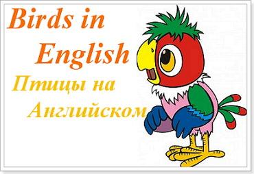 Ласточка по английски