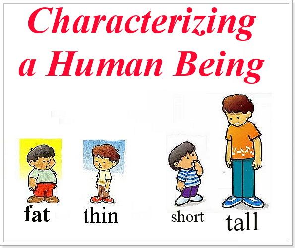 Физические характеристики английский