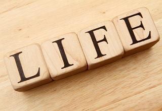 фразы на английском о жизни