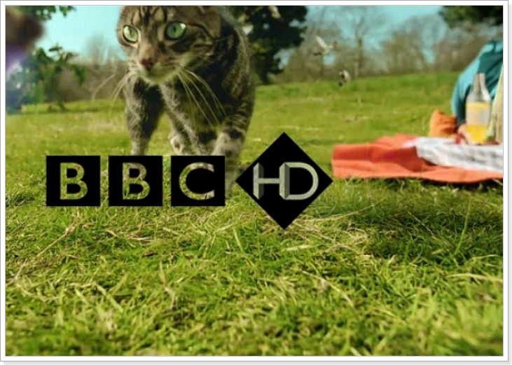 Канал телевидения для изучентя английского языка