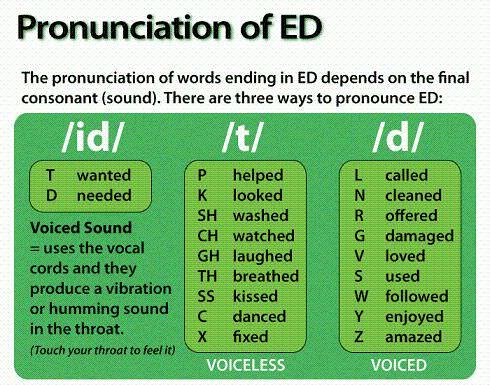 Окончание ed в английском языке